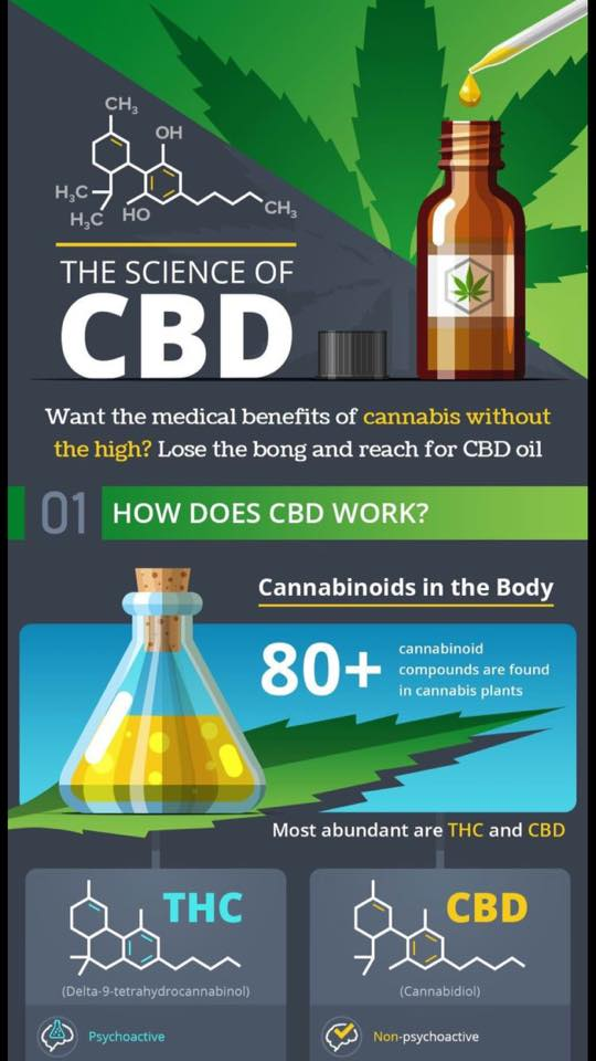 science of CBD 1