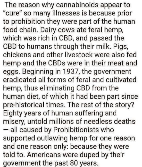 The Reason hemp